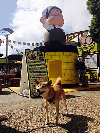ガリタ食堂in柴犬さくら