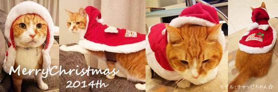 MerryChristmas☆2014