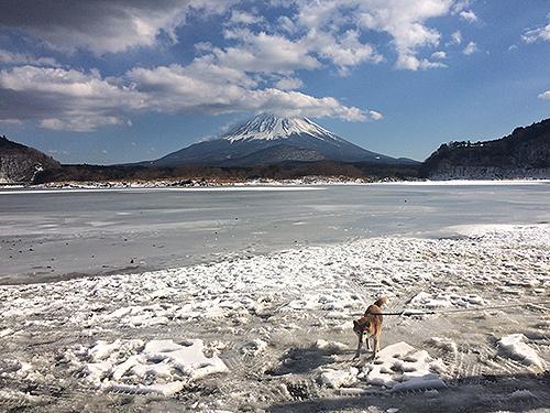2018,2,4精進湖全面結氷